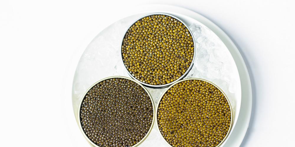 Cómo se come el caviar